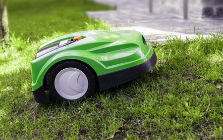 Robotic lawn mower mows the lawn in a garden.