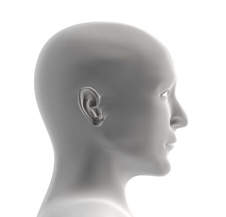 Human head of grey color. Object over white Stock Photo - 3247645