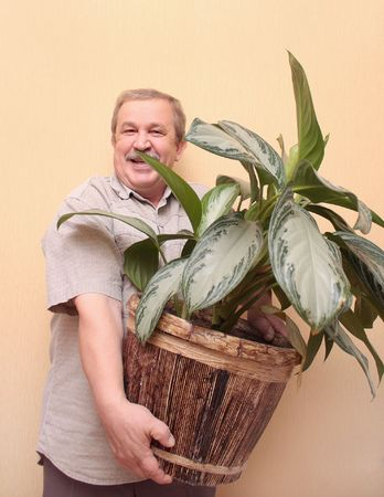 Cheerful elderly the man with a flowerpot Stock Photo - 3632998