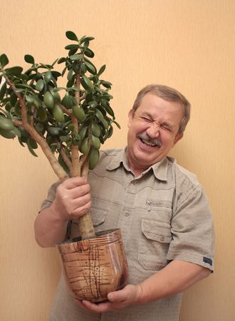Cheerful elderly the man with a flowerpot Stock Photo - 3633001