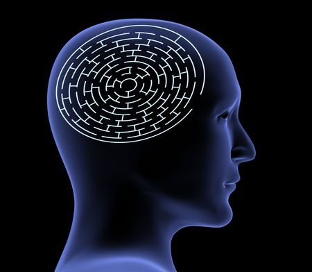 Brain in the form of the maze photo