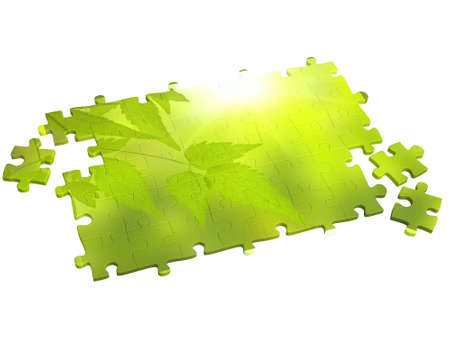 collected: Collected puzzle with the image of leaf