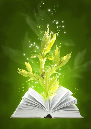 cuatro elementos: Conjunto - los libros de cuatro elementos. Libro de la tierra m�gica