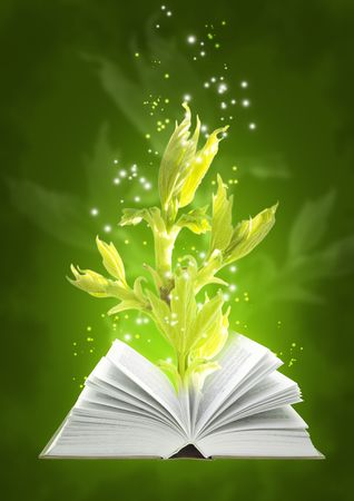 Set - books of four elements. Book of ground magic