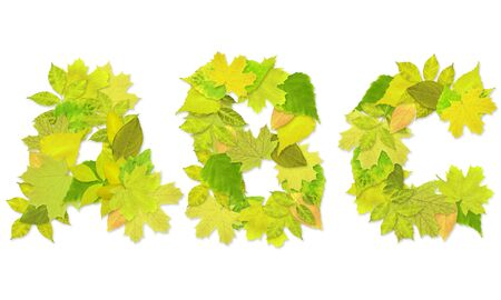 Alphabet - letters with a green leaves. Set 1 Stock Photo - 6363123