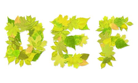 Alphabet - letters with a green leaves. Set 2 Stock Photo - 6363183