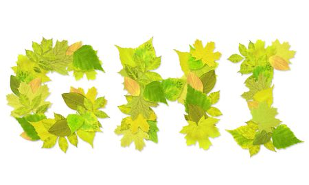 Alphabet - letters with a green leaves. Set 3 Stock Photo - 6363128