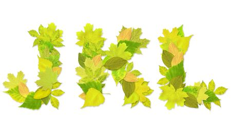 Alphabet - letters with a green leaves. Set 4 Stock Photo - 6363121