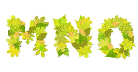 Alphabet - letters with a green leaves. Set 5 Stock Photo - 6363126
