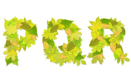 Alphabet - letters with a green leaves. Set 6 Stock Photo - 6363136