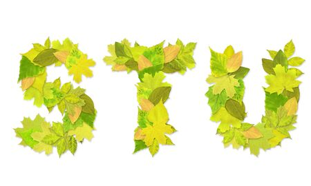Alphabet - letters with a green leaves. Set 7 Stock Photo - 6363180