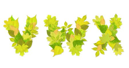 Alphabet - letters with a green leaves. Set 8 Stock Photo - 6363120