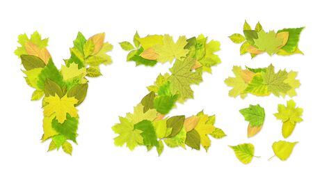 Alphabet - letters with a green leaves. Set 9 Stock Photo - 6363179