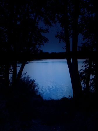 tranquillity: Night lake - bright water and black trees