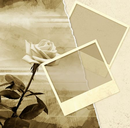 photography backdrop: Grunge background with rose and photoframes