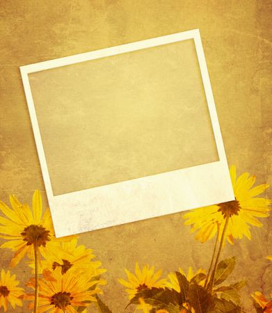 Grunge background with flowers and photoframes photo