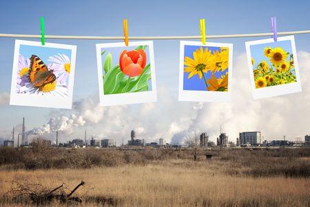 pipe dream: Concepto de ecolog�a - muerte y vida