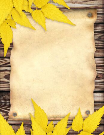 Grunge background with paper sheet and autumn leaves photo