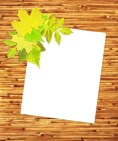 Japanese reed mat, paper sheet and summer leafs photo