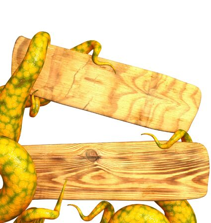 Tentacles of a monster, holding a wooden board. Isolated over white photo