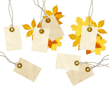 Set - labels and autumn leaves. Isolated over white photo