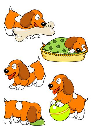 red spaniel puppy Vector