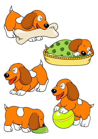 red spaniel puppy Vector