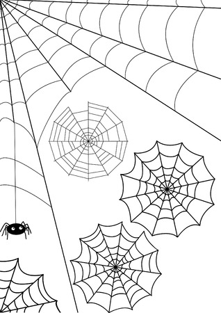 spider web: Set -   webs and spider. Isolated over white