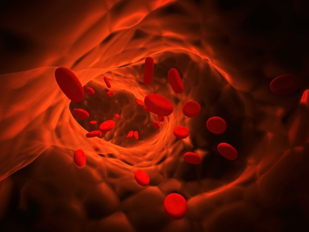 Many red erythrocytes, floating on an artery photo
