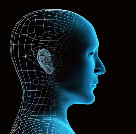Transparent human head. X-ray and mesh Stock Photo - 7933730