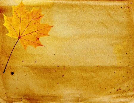 Grunge background with autumn leaves. Paper texture photo
