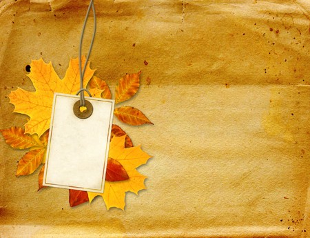 Label, autumn leaves and texture of old paper  photo