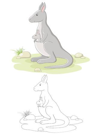 kangaroo mother: Vector family of kangaroo - mom and baby