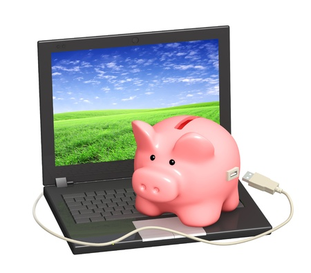 Electronic bank account. Piggy bank and laptop. Objects isolated over white Stock Photo - 8948530