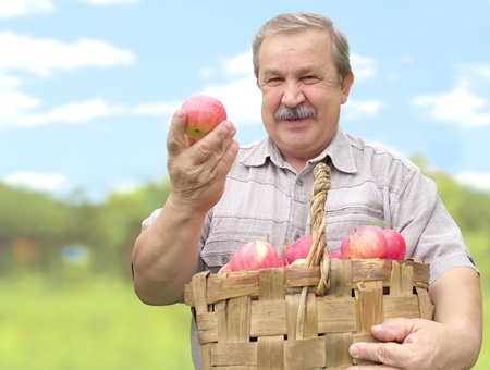 Elderly man, harvesting a apple photo