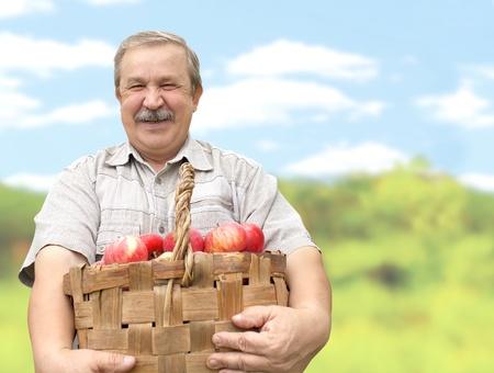 農家: 老人はリンゴの収穫