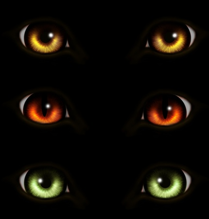 Collection of eyes animals. Over balck photo