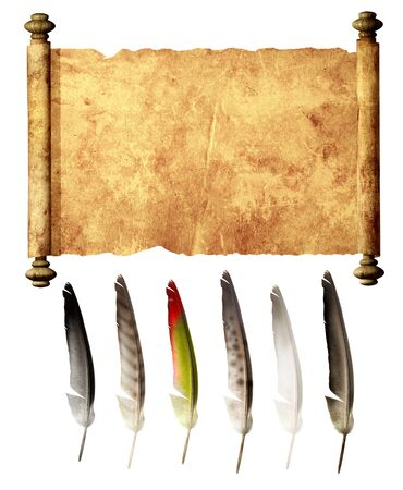 ancient papyrus: Old parchment and collection of feathers. Isolated over white Stock Photo