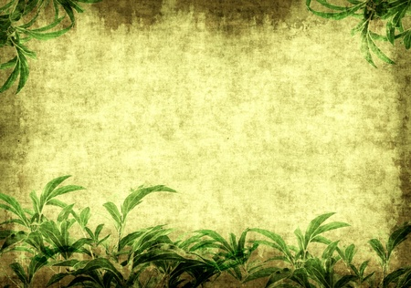 ancient papyrus: Grunge background - a sheet of the old paper with green leaves Stock Photo