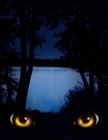 wilkołak: Ciemny seria - spojrzenie z ciemności Zdjęcie Seryjne