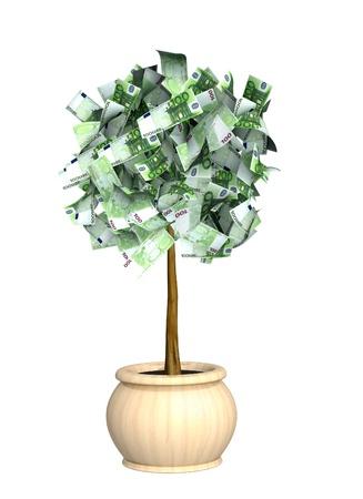 Money tree. Isolated over white Stock Photo - 10367652