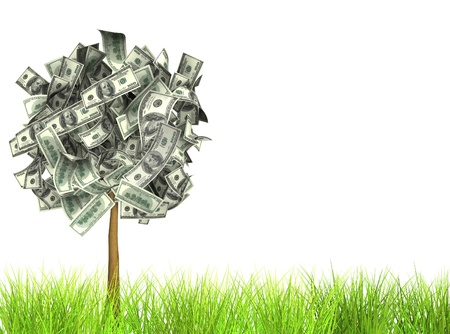 Money tree. Isolated over white Stock Photo - 10367660