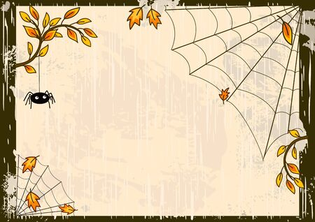 halloween decoration: Vector Halloween background with spider and web Illustration