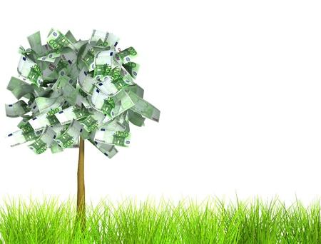 Money tree. Isolated over white Stock Photo - 10515222