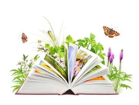 lezing: Boek van de natuur. Geà ¯ soleerde over witte Stockfoto