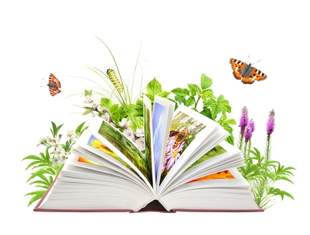 reading a book: Book of nature. Isolated over white Stock Photo