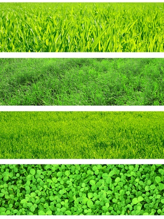 Collection of bsnners with green grass  photo