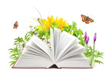 libros abiertos: Libro de la naturaleza. Aislado en blanco