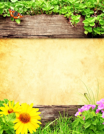 spring message: Summer background with old wooden plank, grass and green leaves