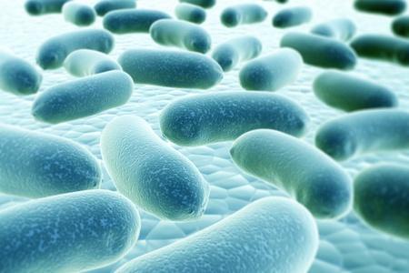 bacterias: Colonia de bacterias patógenas - 3d